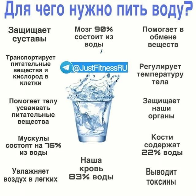 Почему кошки и коты не пьют воду