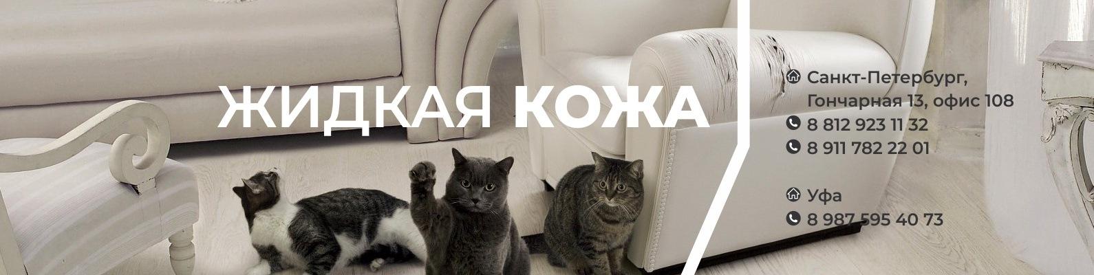 Как отучить кошку, кота, котенка драть, царапать мебель и обои
