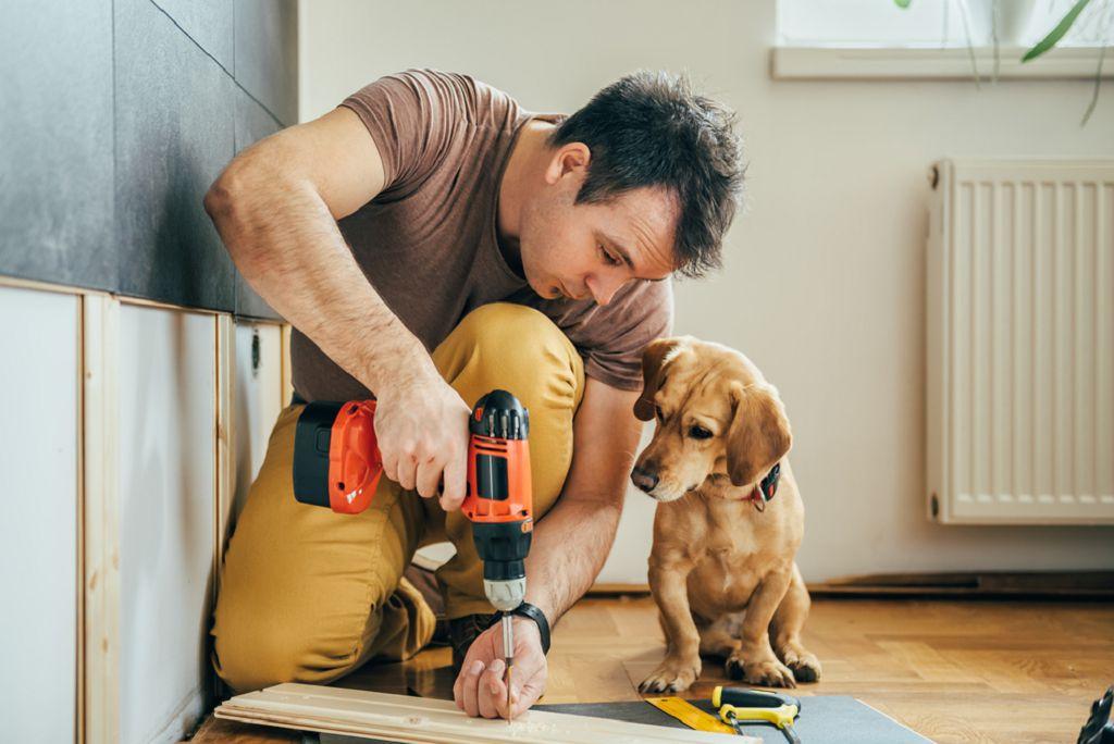 Выбор лучшей породы собак, которая подходит для жизни в частном доме