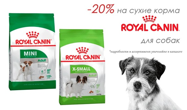 Обзор линейки кормов от фирмы royal canin для собаки мелкой породы и щенка