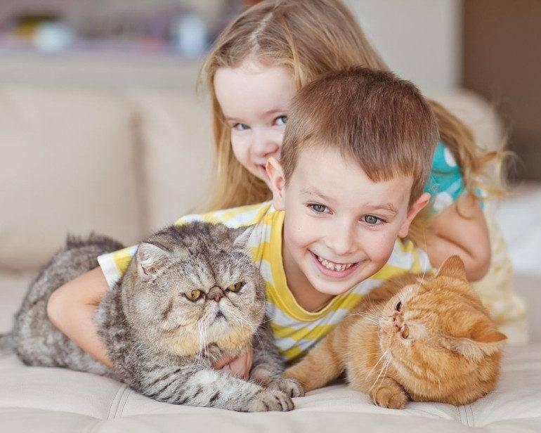 Топ-50 лучших пород собак для семей с детьми