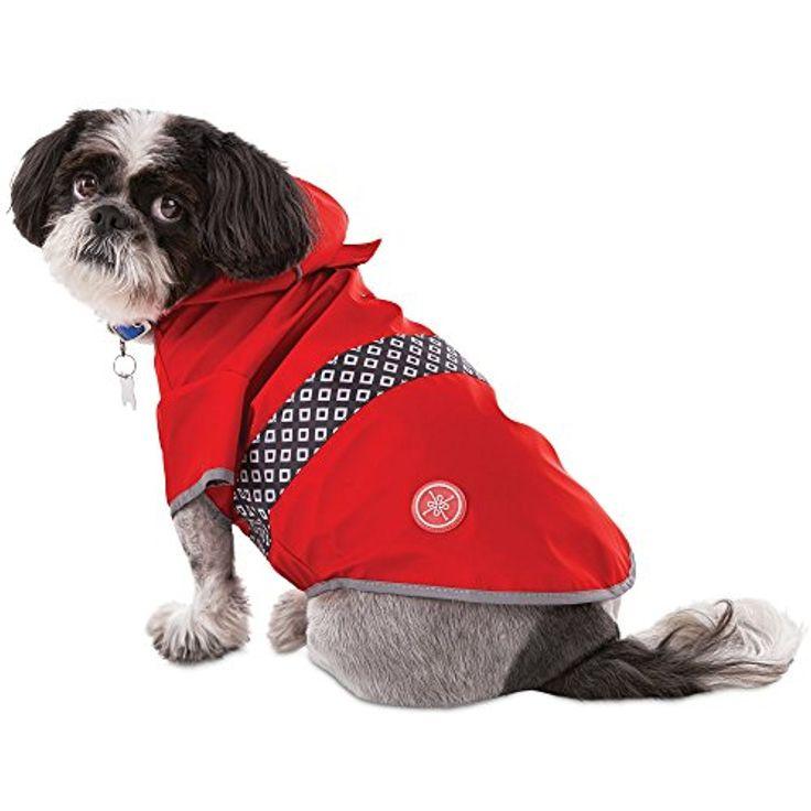 Топ 10 дождевиков для собаки   экспресс-новости