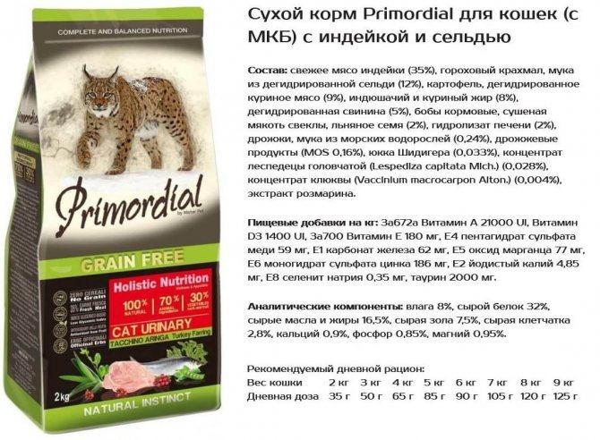 Рейтинг сухих кормов для кошек — плюсы и минусы, выбор правильной дозировки, советы по кормлению, мифы о питании сухим кормом