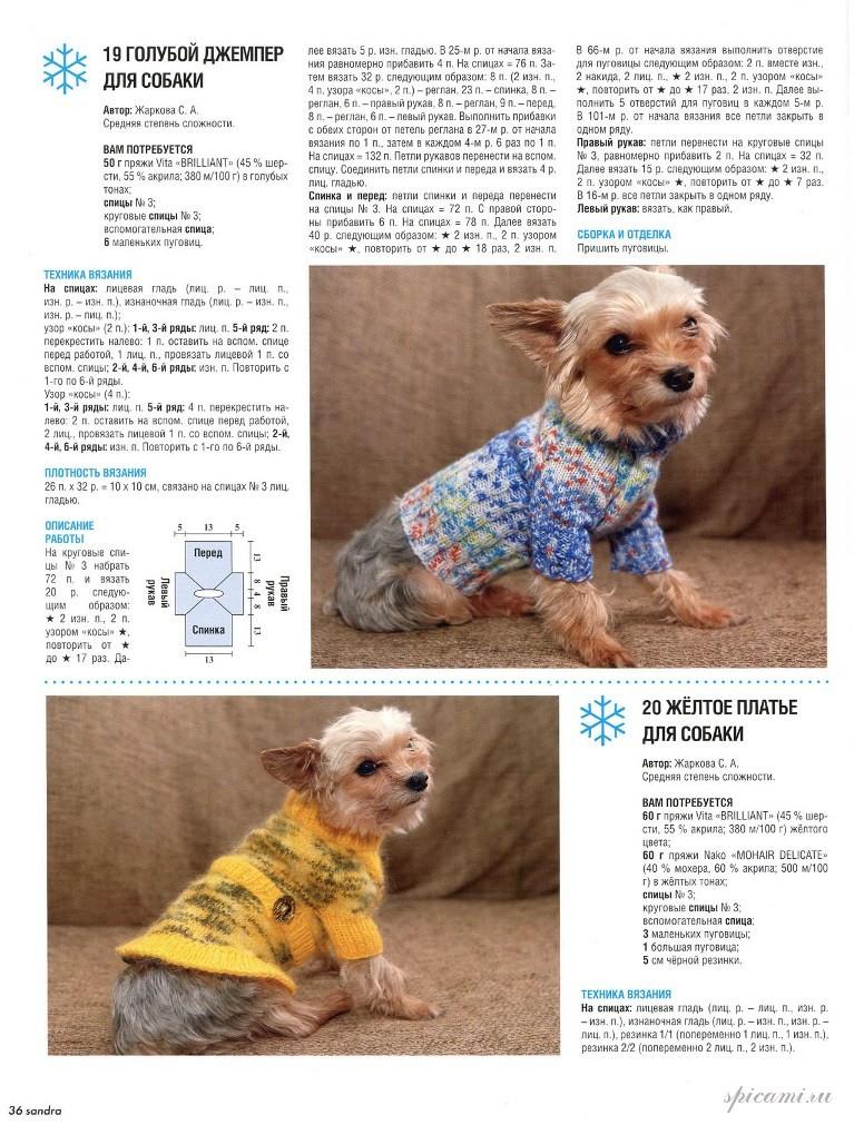 Вязание для собак мелких пород спицами