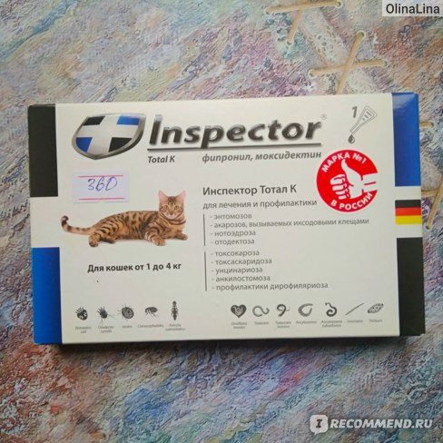 Особенности применения препарата «инспектор» для кошек