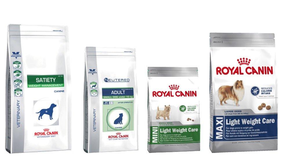 Диеты для собак при ожирении: виды диет, продукты, корма