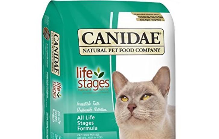 Корма холистики для кошек: список, рейтинг, отзывы - петобзор