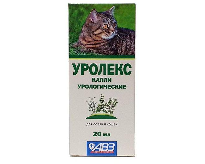 Уро-урси для кошек: показания и инструкция по применению, отзывы, цена