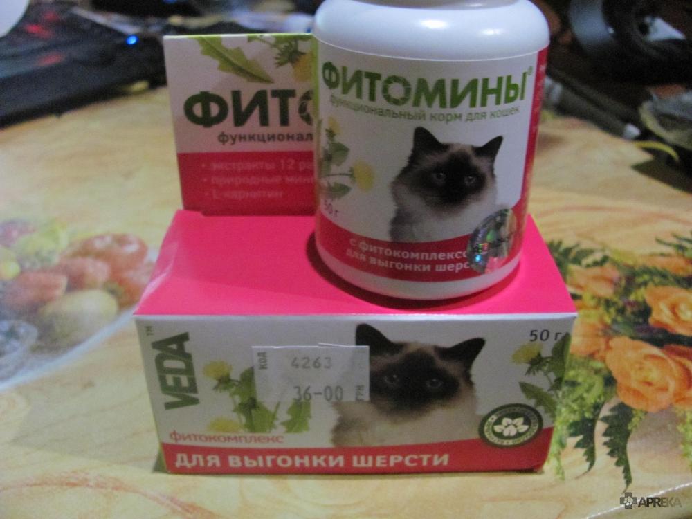Топ-10 лучших витаминов для кошек – рейтинг 2020 года