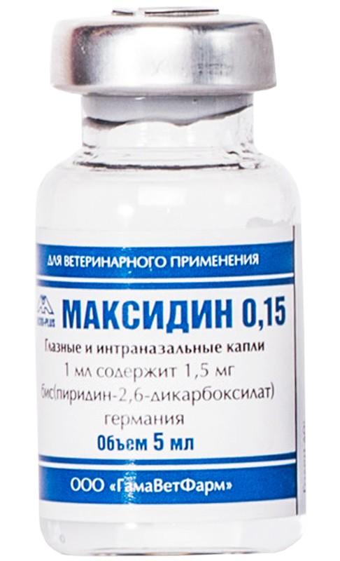 Инструкция по применению максидина для кошек. максидин: использование для кошек