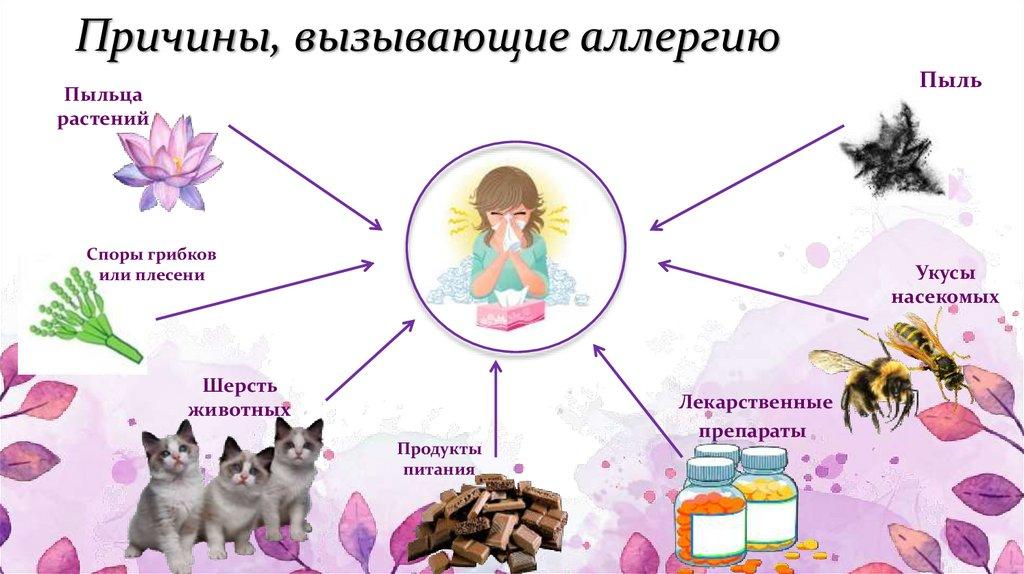 Аллергия на животных  - симптомы, причины, профилактика и лечение