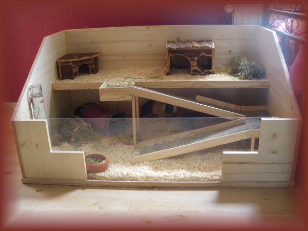 Клетка для морских свинок из дерева, металла и пластика – как выбрать, размер, двухэтажные модели