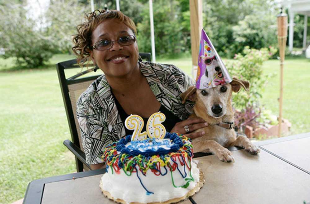 Топ-15 самых долгоживущих пород собак