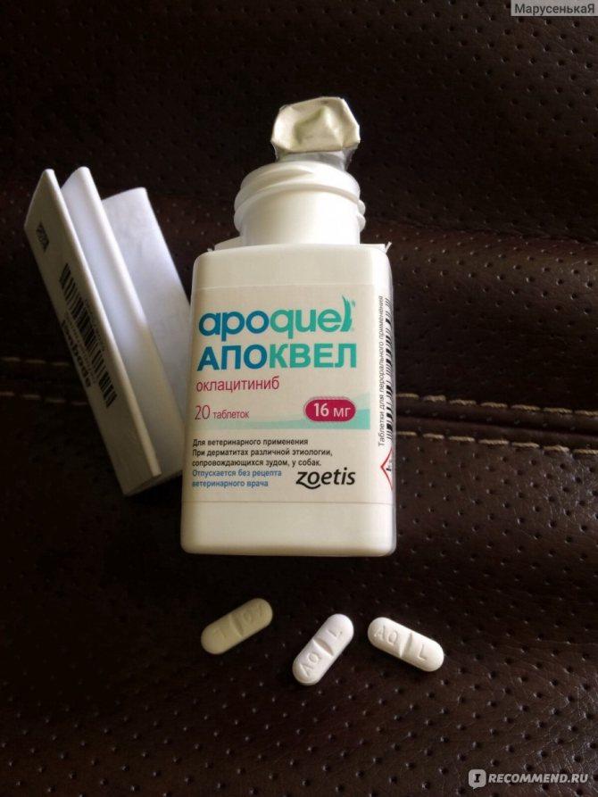 Апоквел (apoquel) - негормональный препарат против зуда