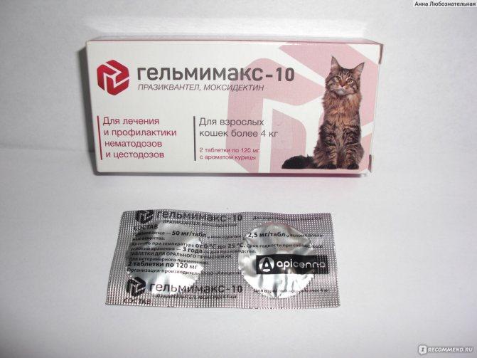 Лекарства для кошек от глистов: названия и виды препаратов - kotiko.ru