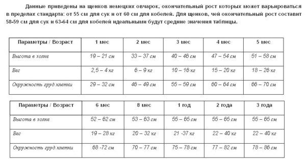 Вес щенка по месяцам - таблица по породам