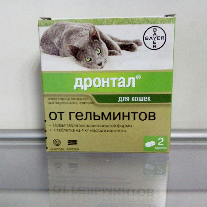 Дронтал плюс – безопасный препарат против глистов