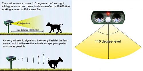 Как избавиться от чужих кошек во дворе частного дома