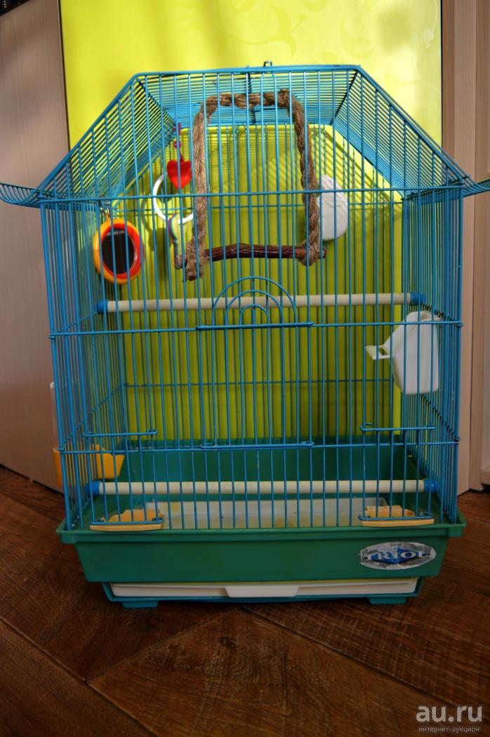 Клетка для попугая своими руками: как сделать, пошаговая инструкция