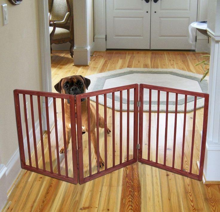 Домашние великаны: большие собаки для квартиры