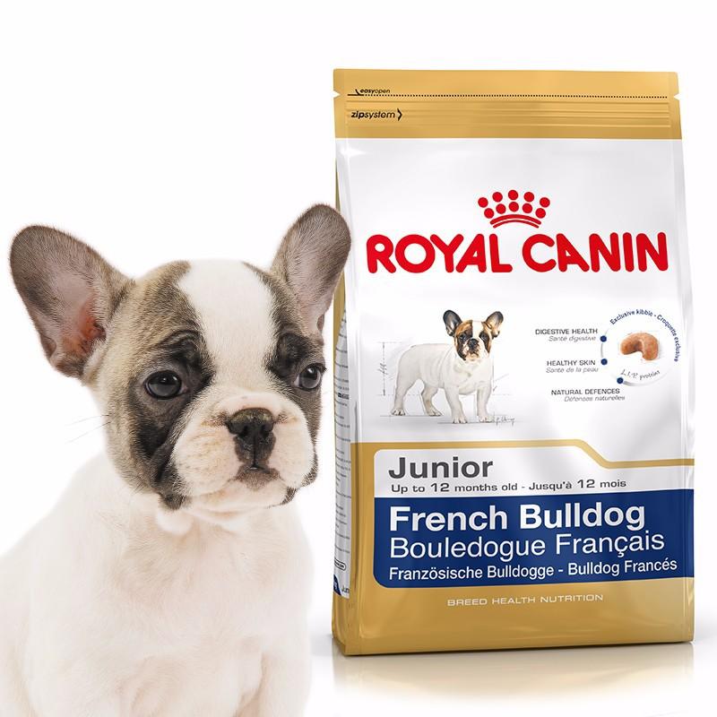 Французский бульдог - порода собак - информация и особенностях   хиллс