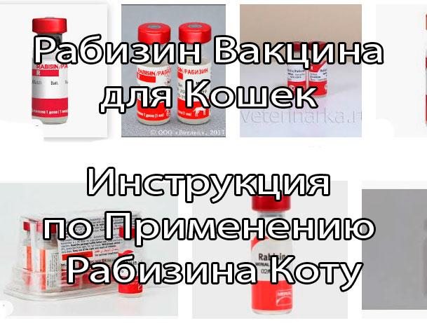 Инструкция по применению препарата рабизин для кошек и собак