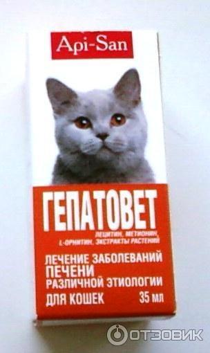 Гепатовет для кошек - инструкция по применению препарата - kotiko.ru