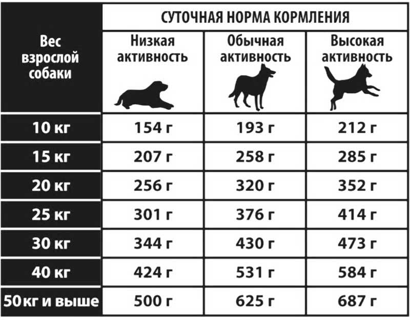 Норма веса для немецкой овчарки (взрослой и щенка)