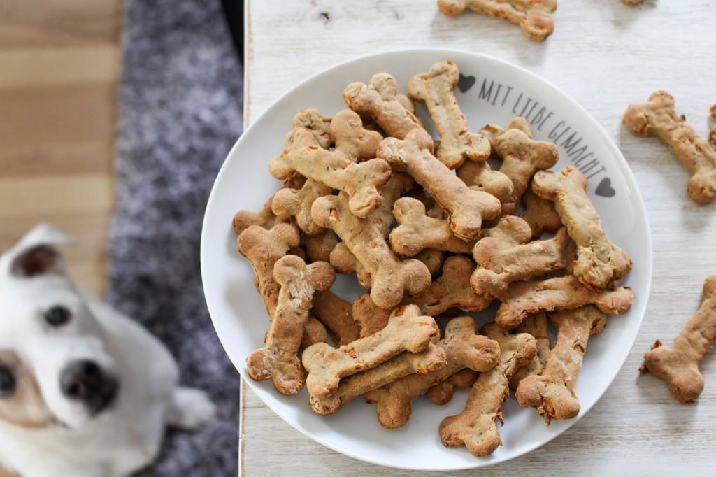 Собака съела фольгу, что делать?