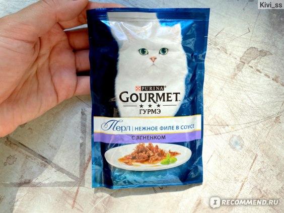 Корм для кошек гурмет | gourmet: состав, виды, плюсы и минусы