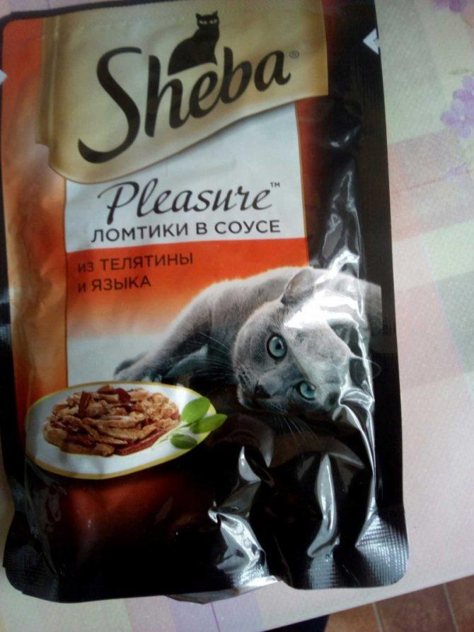 Корм «шеба» (sheba) для кошек: ассортимент и состав кошачьих консервов, достоинства и недостатки