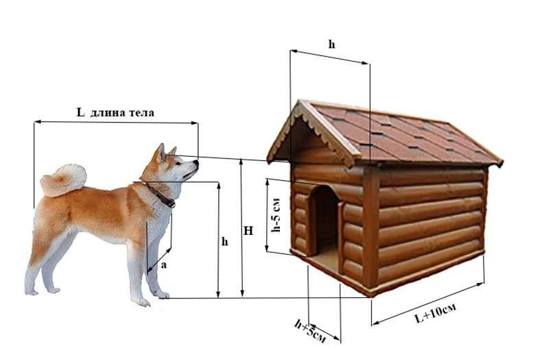 Будка для собаки своими руками - чертежи, схемы, пошаговая инструкция + фото