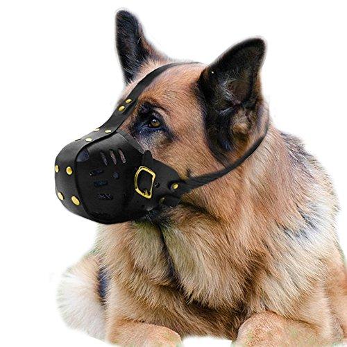 Намордник для собак (23 фото): прикольные и страшные намордники с зубами. намордники для маленьких и больших собак. как выбрать их по размеру?