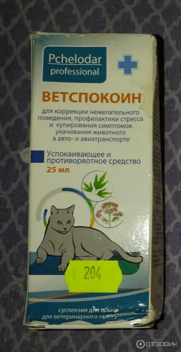 Какие успокоительные можно давать кошкам