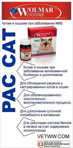 Лечение и профилактика мочекаменной болезни у кошек и собак   артемида - ветеринарная клиника во владимире с 25-летней историей