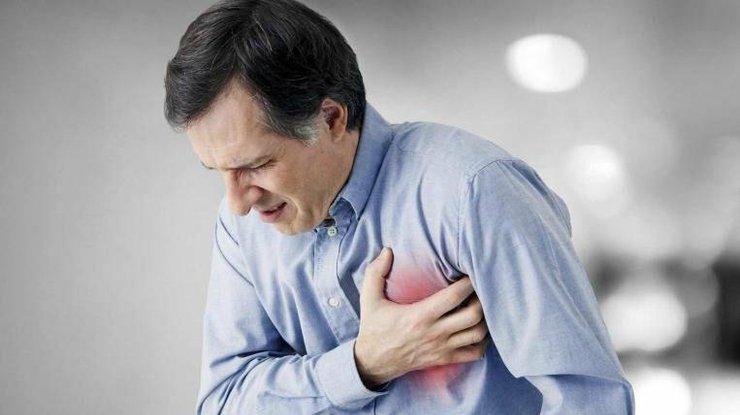 Заворот желудка у собак и кошек: причины, симптомы, диагностика и лечение недуга