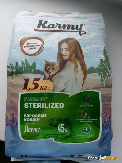 Корм для кошек karmy: отзывы, разбор состава, цена