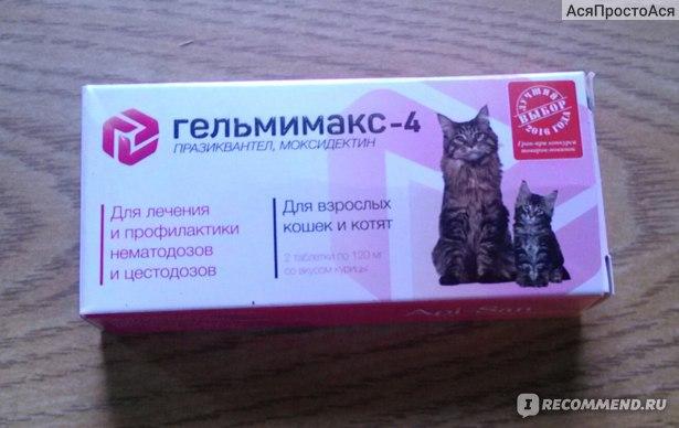 Марена красильная для лечения мочекаменной болезни у кошек