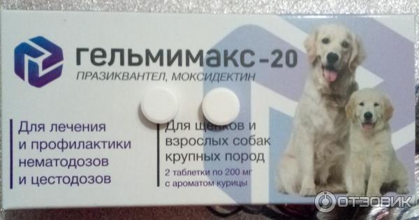 Гельмимакс для собак: инструкция по применению, особенности использования антипаразитарного препарата