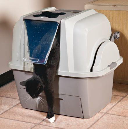 Закрытый туалет для кошек: плюсы и минусы, разновидности, правила использования, советы по приучению
