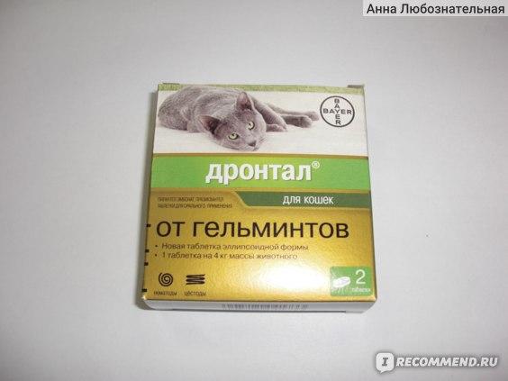 Дронтал для кошек и котов: дозировка, применение и показания к использованию с описанием побочных эффектов лекарства