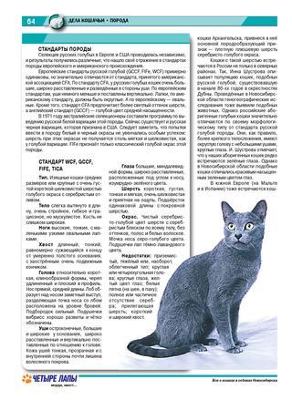 Русские породы кошек: названия самых популярных