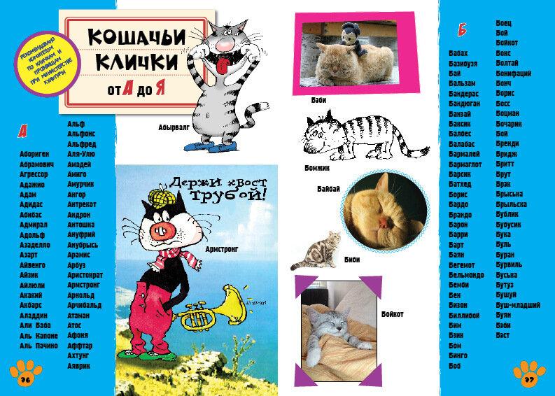 ᐉ клички (имена) кошек и котов на английском языке - getzoofood.ru