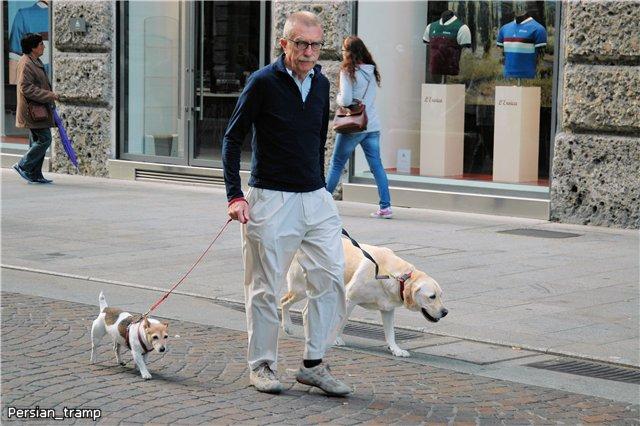 Сколько и как именно нужно гулять с собакой