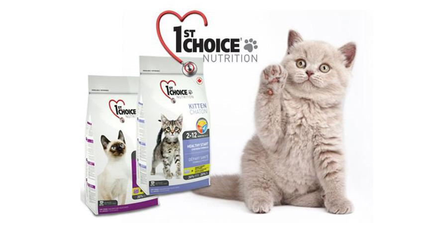 Корм для кошек 1st choice: отзывы и обзор состава + видео и фото