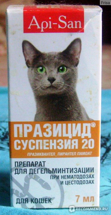 От глистов защитит празицид для кошек