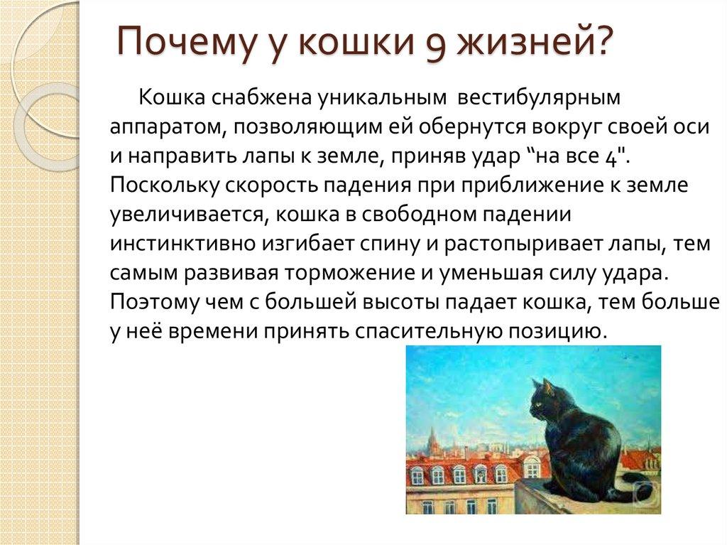 20 самых распространенных болезней кошек с описанием и фото