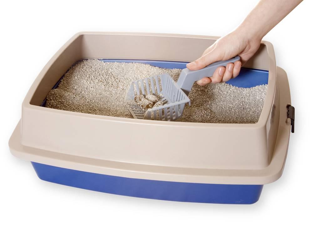 Можно ли использовать кошачий наполнитель для собак мелких пород