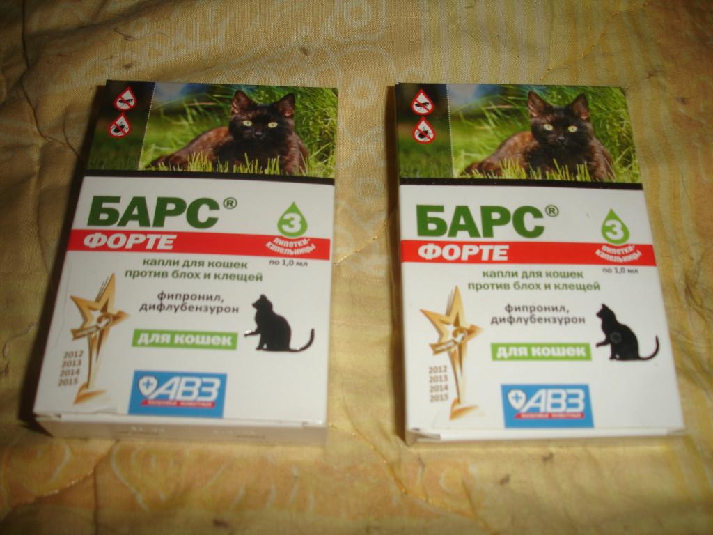 Способ применения капель барс для кошки против блох и клещей: обзор инструкции