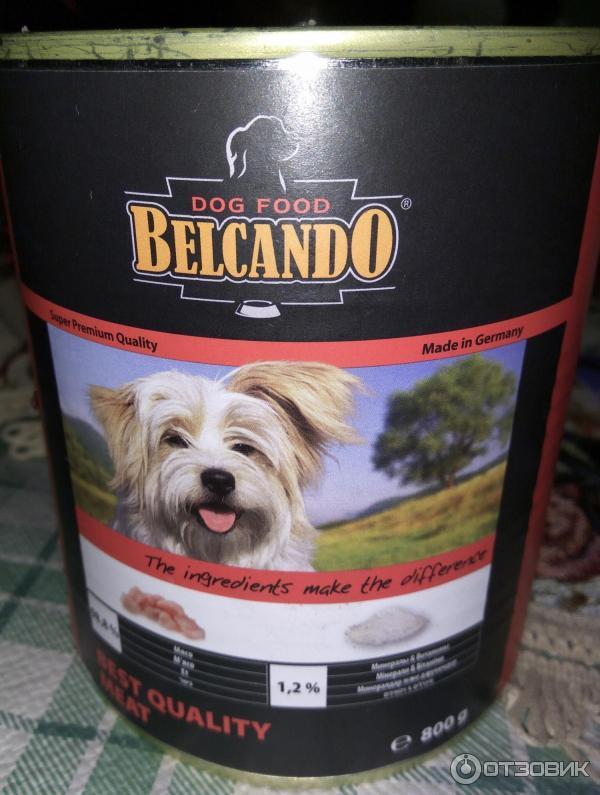 Корм для собак kennels favourite: отзывы и разбор состава - петобзор